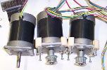 The Stepper Motors